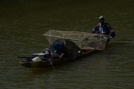 gambia riviver